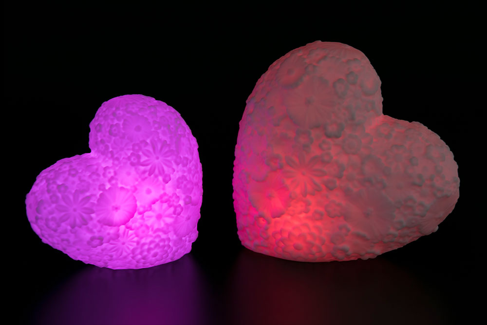 Magic Flower Heart Light HHP-270
